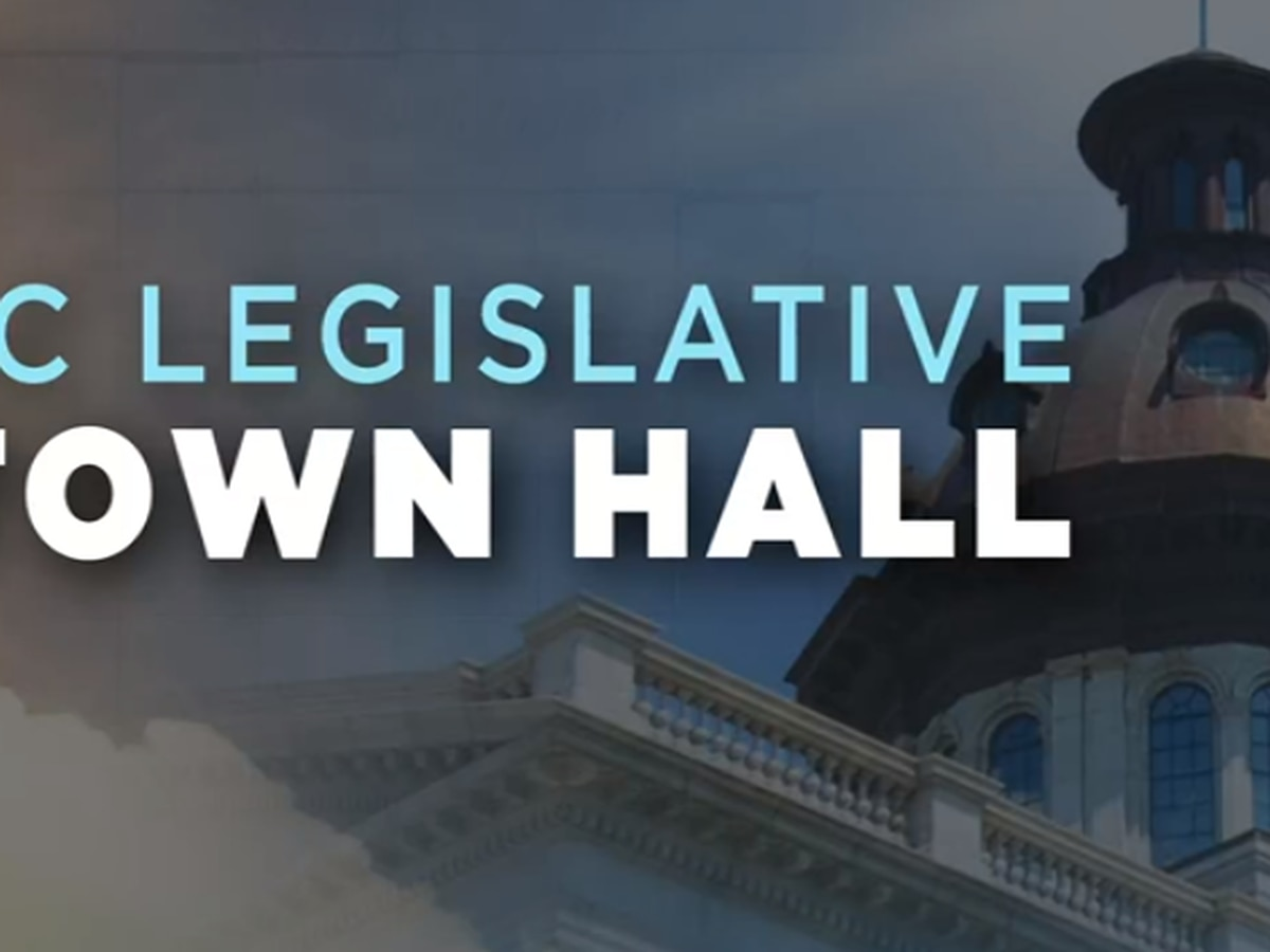 ICYMI: ACLU South Carolina Legislative town hall at the Statehouse