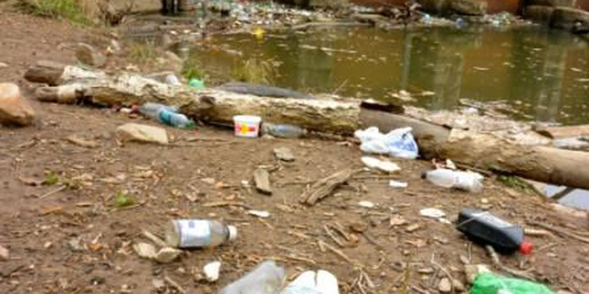 Local organization files federal suit to stop sewage discharge into Saluda River