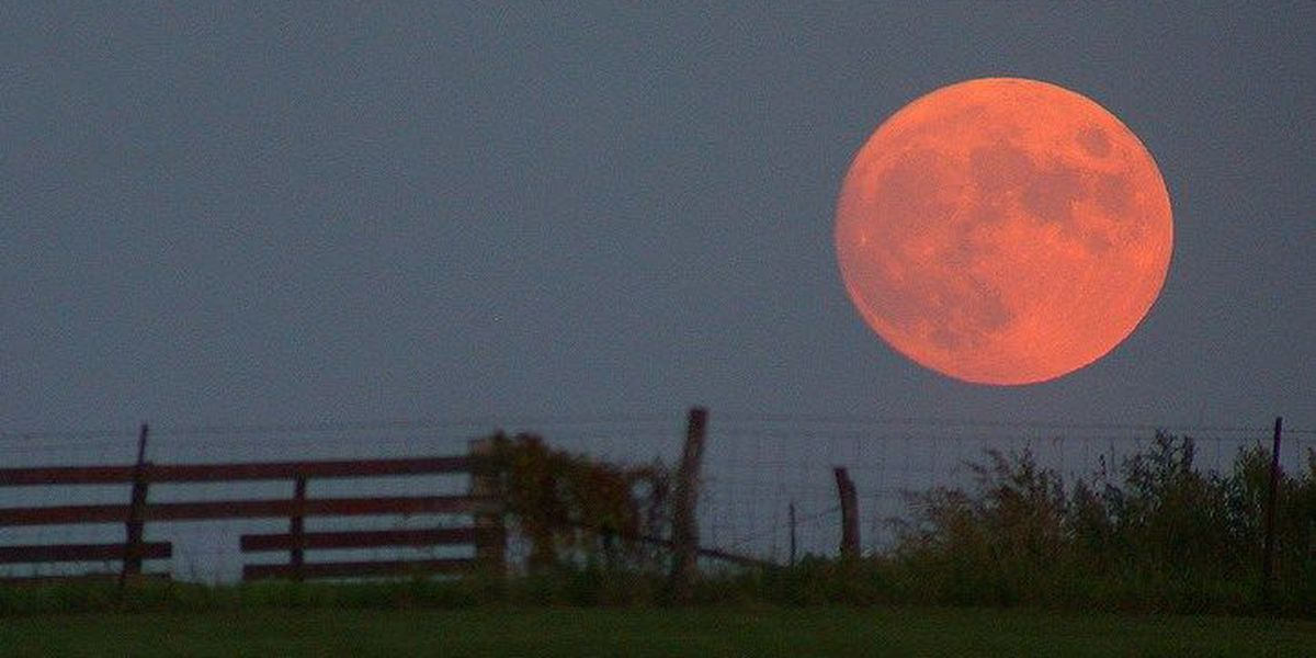 Tonight's harvest moon will be a sight to behold!