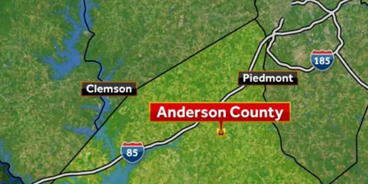 Man charged; 12 malnourished, 6 improperly buried cows found in Anderson County, deputies say