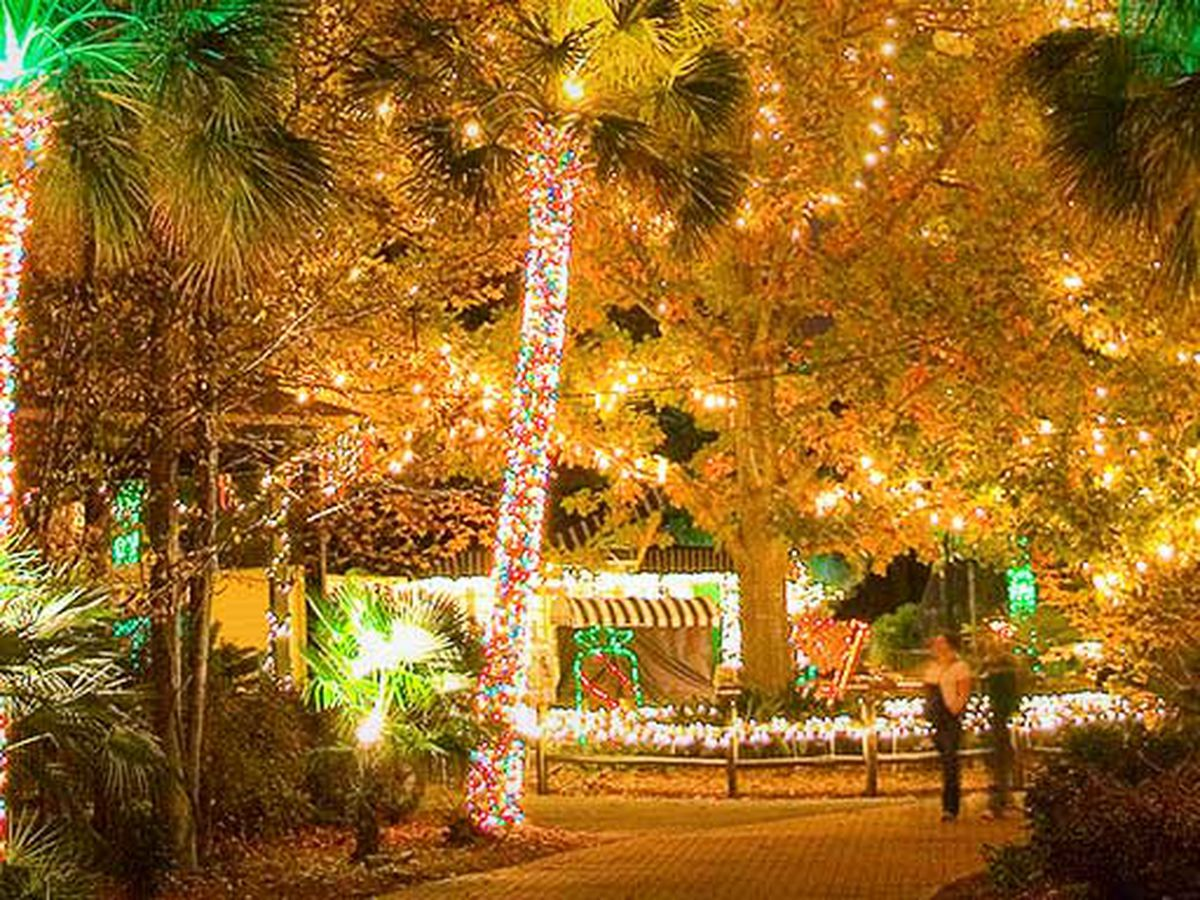Riverbanks Zoo and Garden presents 'Lights Before Christmas'